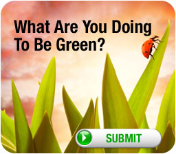 What Are You Doing To Be Green?